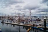 Uh lala, ganz viele Boote.